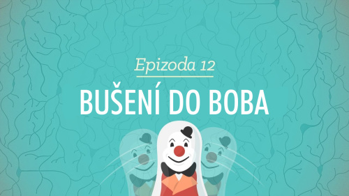 Psychologie: Bušení do Boba